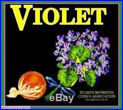 306641 Duarte Los Angeles County Violet #2 Orange Fruit Crate POSTER Affiche