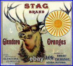 306979 Glendora Los Angeles County Stag #2 Orange Fruit Crate POSTER PLAKAT