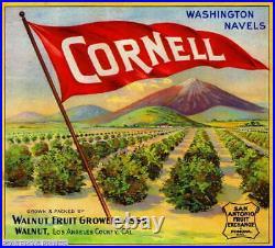 307606 Walnut Los Angeles County Cornell Orange Fruit Crate PRINT POSTER PLAKAT