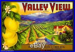95793 Claremont Los Angeles County Valley View Lemon Decor LAMINATED POSTER FR