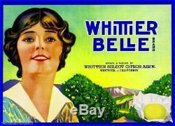 95854 Whittier Los Angeles County Belle Lemon Citrus Decor LAMINATED POSTER FR