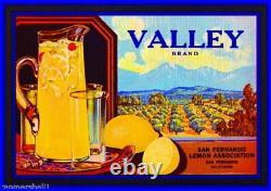 96869 San Fernando Los Angeles County Valley Lemon Decor LAMINATED POSTER CA