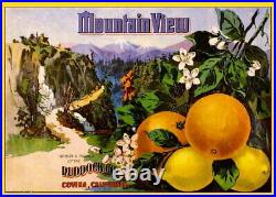 97942 Covina Los Angeles County Mountain View Lemon Decor LAMINATED POSTER UK